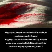 kreww