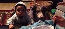 """Kobieta chciała, aby dziecko powiedziało """"mama"""". Aż nagle pies stojący obok z..."""