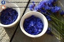 Kwiaty chabru bławatka najlepiej suszyć w ogrzewanych suszarniach. Domyślam s...