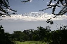 Kilimandżaro (5895 m n.p.m.)Góra w Tanzanii leżąca przy granicy z Kenią. Jest najwyższą górą Afryki i jednym z najwyższych wolnostojących masywów na świecie. Droga w górę wiedzi...