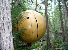 Lubicie domki na drzewie? W...