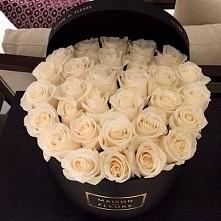 biale roze ❤