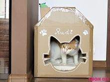 Kartonowy domek dla kota - zobacz na twojediypl A cardboard house cat - see twojediypl