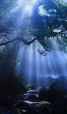Kikuchi Gorge, Kumamoto, Japonia