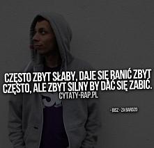 ~Bisz (B.O.K)