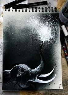 słonik ♡ biało - czarne
