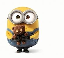 Minionki - Bob :)