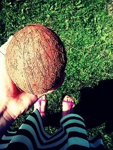 kokos :)