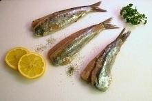Jak kupić zdrową rybę?   Kl...