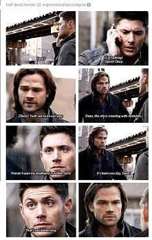 ten sarkazm Deana