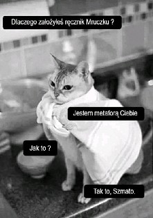 Hahahahaha ;D  Chyba chce kota <3