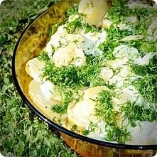 ZIEMNIACZANA SAŁATKA DO DAŃ Z GRILLA Składniki: •700 g młodych ziemniaków •3 zielone ogórki •3 ogórki kiszone •2 małe cebule •pęczek koperku •2 łyżki jogurtu naturalnego •2 łyżk...
