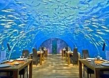 Ithaa - Malediwy (restaurac...