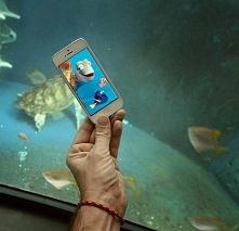 Gdzie jest Nemo? :)