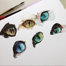 Kocie oczy.