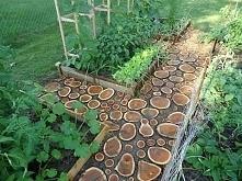 drewniana nawierzchnia
