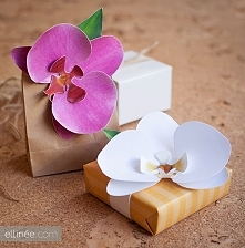 papierowe orchidee (+ wzory do wydruku)