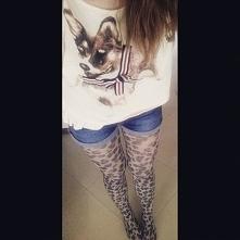 #rajstopy #szorty #jeans #moda #dog #piesek #t-shirt #włosy #hairs #beż #biel