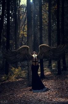 Anioł lasu