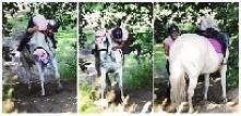 bo trzeba upadać z uśmiechem ;-) koń#jazdakonna#