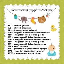 Słowniczek pojęć USG ciąży Zapraszam na bloga