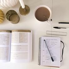 study ;)
