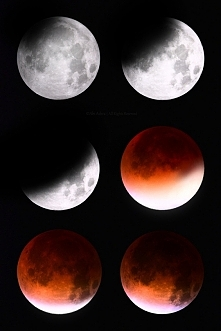 Blood Moon/Krwawy Księżyc