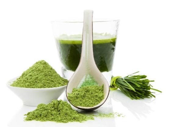 Sproszkowany sok z młodego jęczmienia oczyści organizm z toksyn. Jesteś na diecie? Musisz tego spróbować.