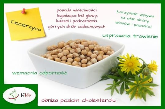 Hummus - pasta z ciecierzycy, zdrowa i smaczna. Sprawdź jak można go przygotować w domu.