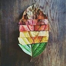 Sama Natura :)