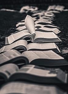 Tyle książek do przeczytani...