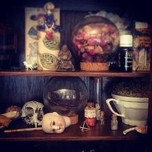 My cabinet of wonders. ❤
