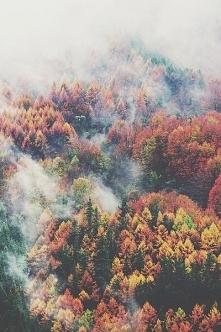 Uwielbiam jesień!