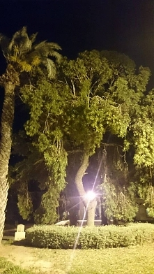 Tunezja Sousse. Tunezyjska, bajeczna noc. Fotografia z kategorii podróże,miej...