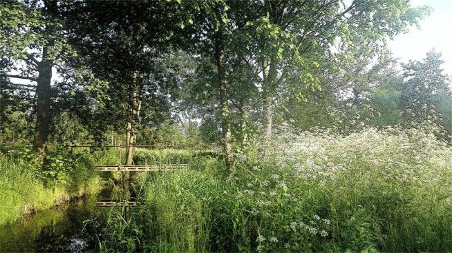 Piękno mojej miejscowości. Fotografia z kategorii natura,krajobraz.