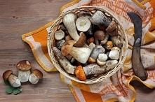 Przepisy na pyszne dania z grzybami :) Klik w zdjęcie :)