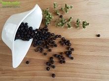 Jałowiec często wykorzystujemy w kuchni. Mi kojarzy się raczej z produktem od wyrobu ginu...jałowcówki. Znacie dobry przepis?