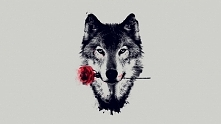 :) Wilk Róża
