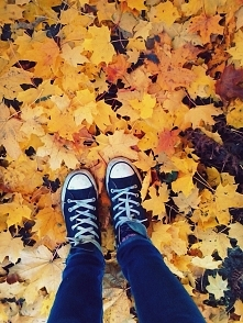 Love Fall :))