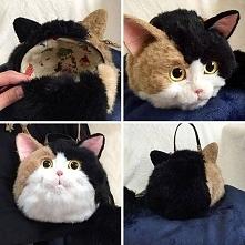 torebki z kota humor