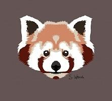 Red Panda. Sama zrobiłam :)