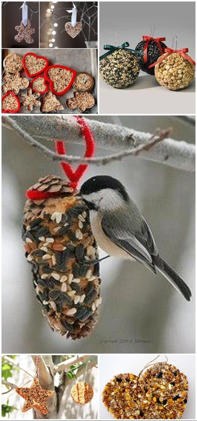 nie zapomnijmy w święta o ptaszkach - zrób to sam