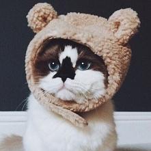 sooo cute :3