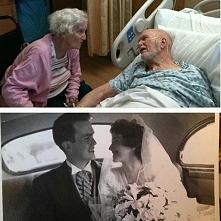 Zdjęcia, które udowadniają, że prawdziwa miłość zdarza się w każdym wieku i t...
