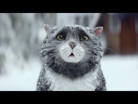 Sainsbury's OFFICIAL Christmas Advert 2015 – Mog's Christmas Calamity