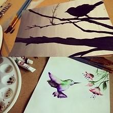 Ptaki farbami