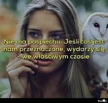 *źródło-Besty