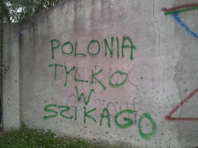 Polonia tylko w Szikago - Namurach.pl