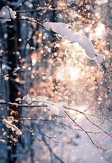 Nie mogę się doczekać pierwszego śniegu :D
