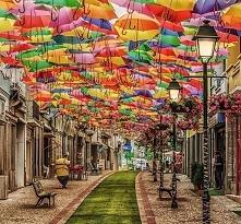 Agueda Portugalia